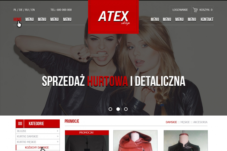 Atex - koncepcja projektu